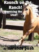Cover for 'Raunch On The Ranch (Servicing The Stud!)'