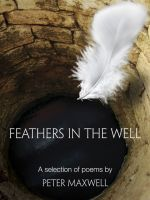 Cover for 'Feathers in the Well'
