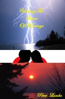 Cover for 'Calming The Storm Of Marriage'