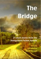 Cover for 'The Bridge — 21 short stories from the Stringybark Fiction Awards'