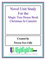 Cover for 'Novel Unit Study for the Magic Tree House Book Christmas in Camelot'