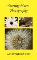 Cover for 'Starting Macro Photography'