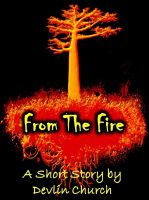 Cover for 'From the Fire'