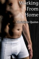 Cover for 'Working From Home (A Gay British First Time Short Story)'