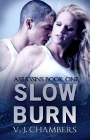Cover for 'Slow Burn'