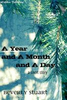 Cover for 'A Year and a Month and a Day'