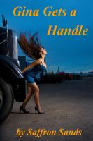 Cover for 'Gina Gets A Handle'