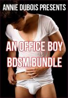 Cover for 'An Office Boy BDSM Bundle'