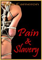 Cover for 'Pain And Slavery'