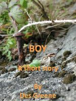 Cover for 'Boy'