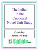 Cover for 'The Indian in the Cupboard Novel Unit Study'