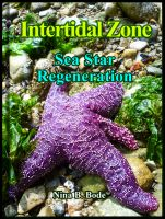 Cover for 'Intertidal Zone---Sea Star Regeneration'