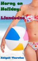 Cover for 'Horny on Holiday: Llandudno'