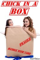 Cover for 'Chick in a Box'