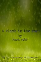 A Flash in the Pan? cover