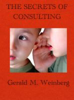 Cover for 'The Secrets of Consulting'