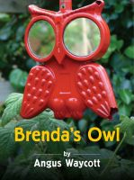Cover for 'Brenda's Owl'