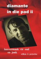 Cover for 'Diamante in die Pad: Deel 2'