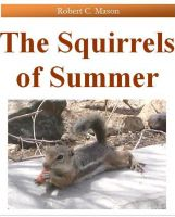 Cover for 'The Squirrels of Summer'