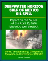 Cover for 'Deepwater Horizon Gulf of Mexico Oil Spill: Report on the Causes of the April 20, 2010 Macondo Well Blowout'