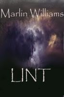 Cover for 'Lint'