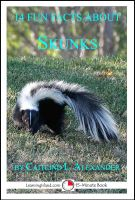 Cover for '14 Fun Facts About Skunks: A 15-Minute Book'