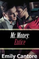 Cover for 'Entice: Mr. Money, Part 5 (A BDSM Erotic Romance)'