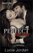 Perfect Lovers Book 1 by Lucia Jordan