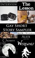 Cover for 'Gay Short Story Sampler'