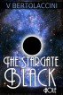 The Stargate Black Hole by V Bertolaccini