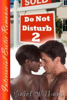 Cover for 'Do Not Disturb 2'
