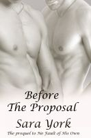 Cover for 'Before The Proposal'