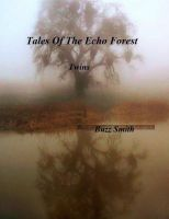 Cover for 'Tales Of The Echo Forest, Twins'