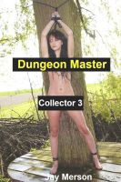 Cover for 'Dungeon Master - Collector 3 (Strong BDSM erotica)'