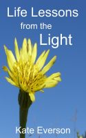 Cover for 'Life Lessons from the Light'