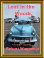 Cover for 'Lost in the Woods'