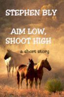 Cover for 'Aim Low, Shoot High'