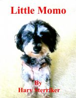 Cover for 'Little Momo'