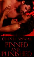 Cover for 'Pinned and Punished'