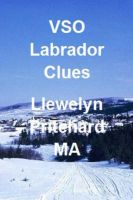 Cover for 'VSO Labrador Clues'