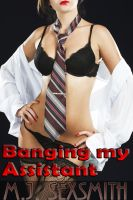 Cover for 'Banging My Assistant'
