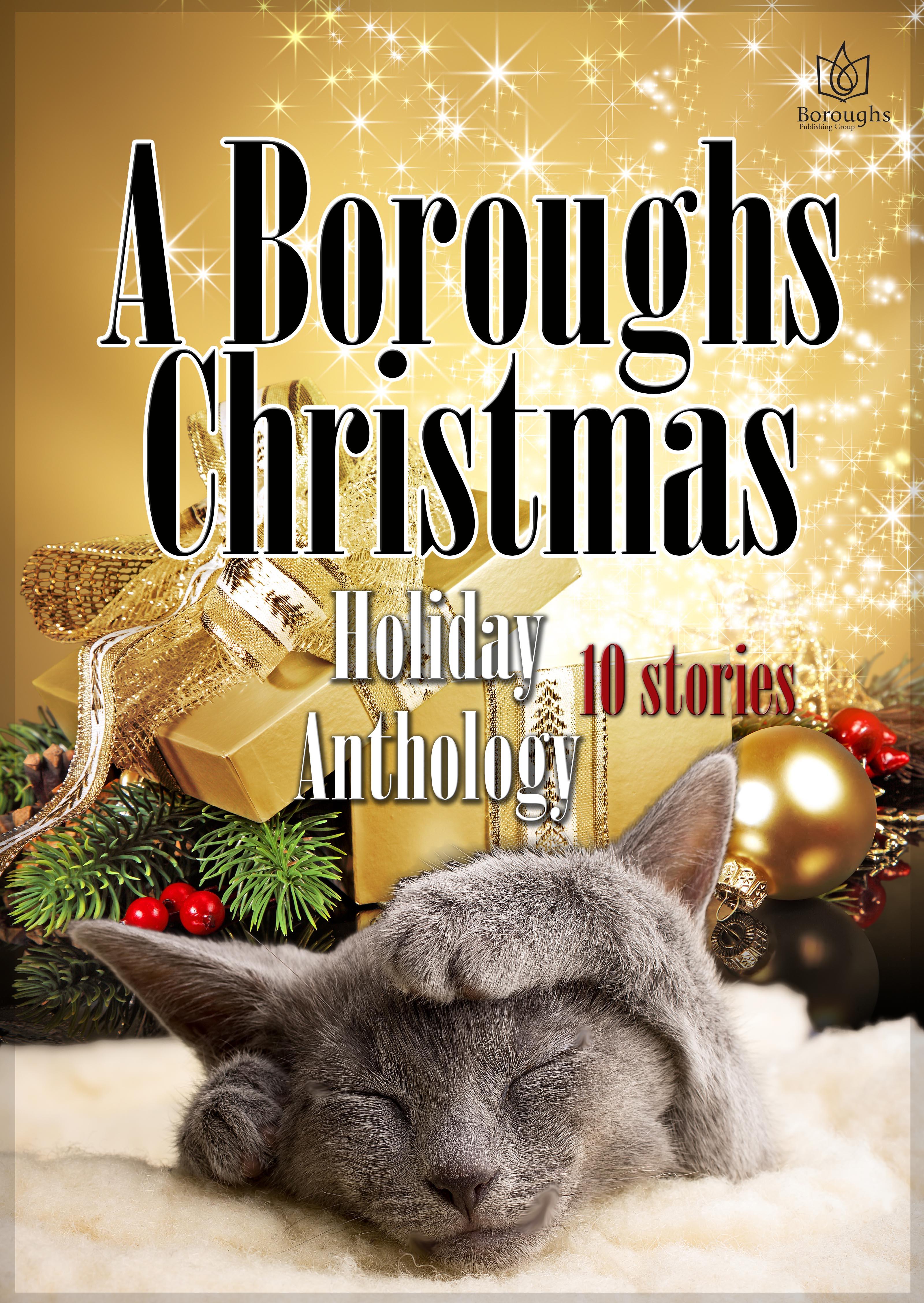 Kellyann Zuzulo - A Boroughs Christmas Holiday Anthology