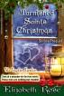 Tarnished Saints' Christmas by Elizabeth Rose