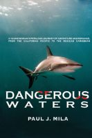 Cover for 'Dangerous Waters'