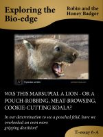 Cover for 'Was This Marsupial A Lion – Or A Pouch-Robbing, Meat-Browsing, Cookie-Cutting Koala?'