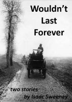 Cover for 'Wouldn't Last Forever'