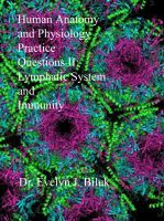Cover for 'Human Anatomy and Physiology Practice Questions II: Lymphatic System and Immunity'
