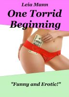 Cover for 'One Torrid Beginning'