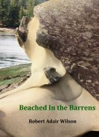 Cover for 'Beached In the Barrens'