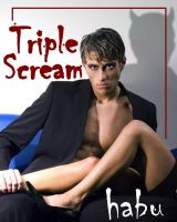 Cover for 'Triple Scream'